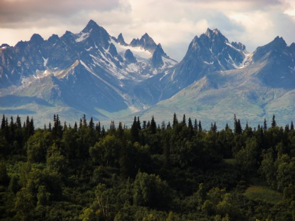 a view of a mountain range in the distance with dark trees in front